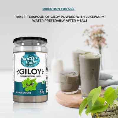 Giloy Powder (Tinospora cordifolia) 250g   Pure And Natural, Organically Processed Fine Quality Guduchi Powder